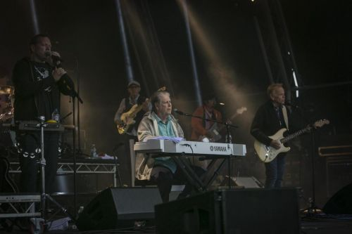 Brian Wilson playing Camp Bestival